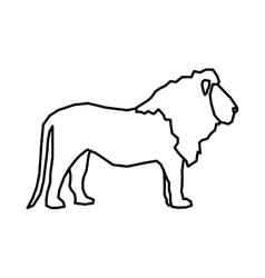 African animal icon lion design graphic vector