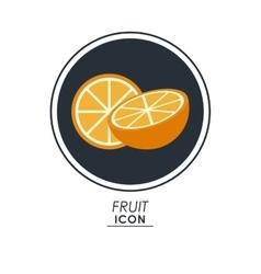 Orange icon healthy food design graphic vector