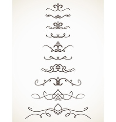 Ornamental calligraphic line vector