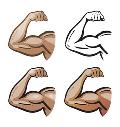 Strong male arm hand muscles biceps icon or vector