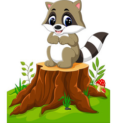 cartoon racoon posing on tree stump vector image