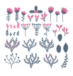 collection of flowers berries leaves and vector image