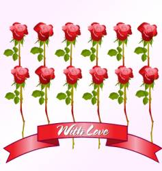 Dozen red roses vector