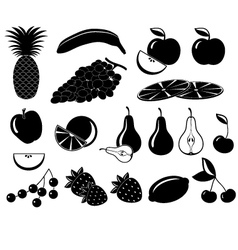 Set icons of fruit vector image vector image