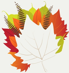 Leaf autumn - background vector