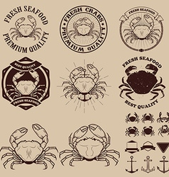 Set of the crab meat labels emblems and design vector