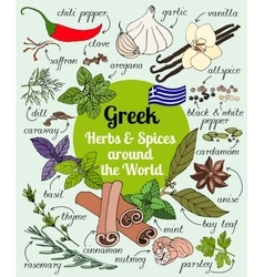 Greek herbs and spices vector