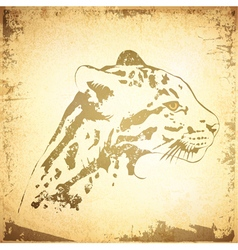 Grunge Jaguar vector image vector image