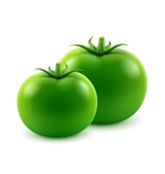 Ripe green fresh whole tomatoes on background vector