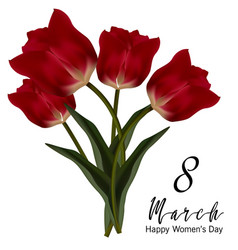 Beautiful realistic tulip bouquet vector