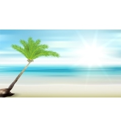 Caribbean sea and coconut palm vector