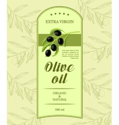 Creative label for olive oil with olive branch vector image vector image