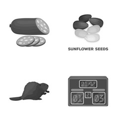 Food sport and other monochrome icon in cartoon vector