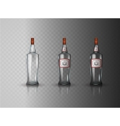 Glass vodka bottle with screw cap vector image