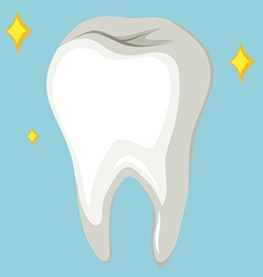 Single human tooth on blue background vector