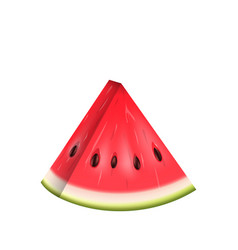 Realistic slice of watermelon water melon vector