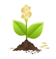 Money growth vector