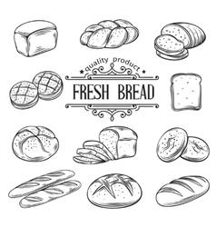 Hand drawn decorative bread vector