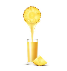 pineapple slice with juice stream and glass vector image vector image