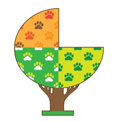 Dog Paw Seasons vector image