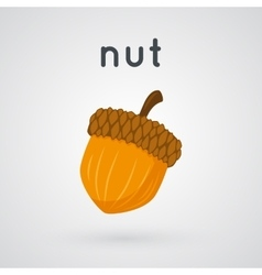 Hazelnut isolated on light background vector