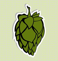 Green hop flower beer ingredient vector