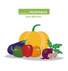 Vegetables icon set healthy food design vector