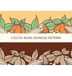 Cocoa beans seamless patterns vector image