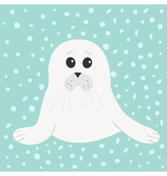 White seal pup baby harp cute cartoon character vector