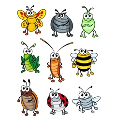 Cartoon insects vector