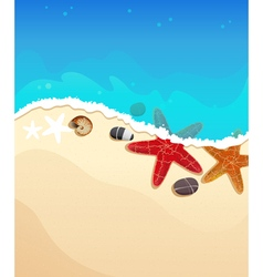 Sea beach with starfishes vector