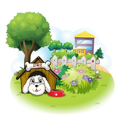A white puppy inside a doghouse vector image