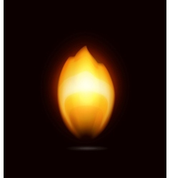 Flame on black icon vector image vector image