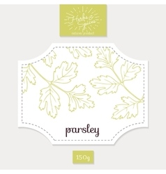 Product sticker with hand drawn parsley leaves vector