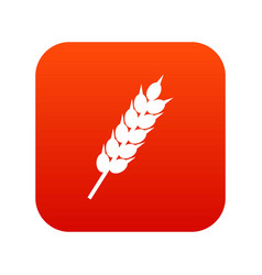 dried wheat ear icon digital red vector image