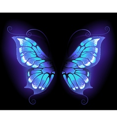 Glowing butterfly wings vector