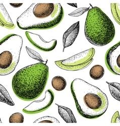 hand drawn green avocado seamless pattern vector image