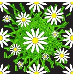 Chamomile and Grass Seamless Pattern vector image