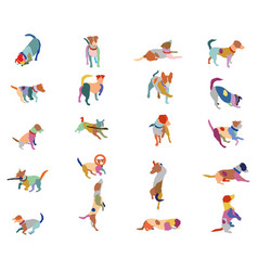 set of colorful terrier dogs vector image vector image