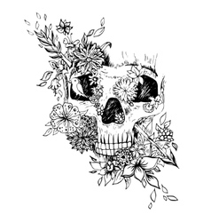 Abstract graphic skull print vector image vector image