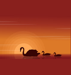 Beauty landscape of swan on lake silhouettes vector