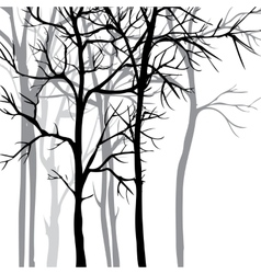 Background with trees vector