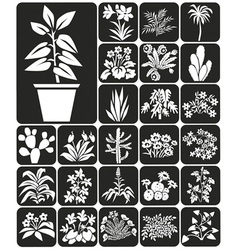 Houseplants vector