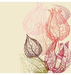 Floral background herbal set vector image vector image