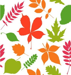 Seamless pattern background Autumn leaves vector image