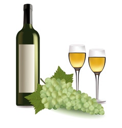 A wine bottle and grapes vector