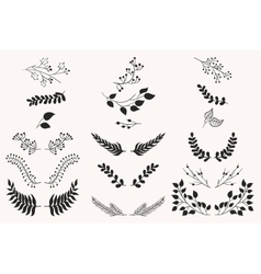 Set of vintage floral elements vector