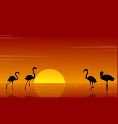 Collection of flamingo silhouette scenery vector