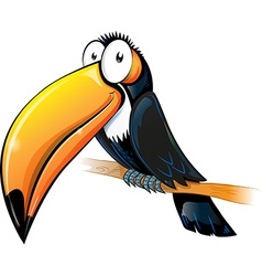 fun toucan cartoon isolated on white vector image
