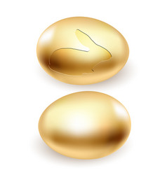 golden rabbit egg vector image vector image